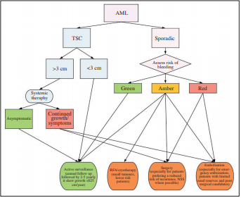 Evidence-based protocol-led management of renal angiomyolipoma: A review of literature